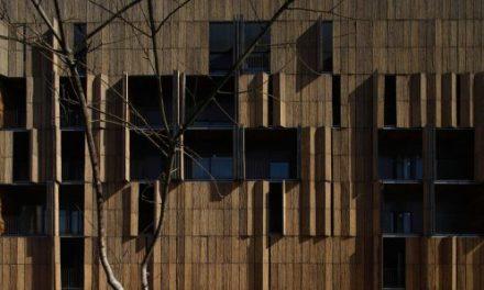 Prisma de Bambú en Carabanchel.